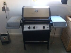 Natural gas Barbecue.