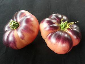 10 Samen Amethst Jewel -violett-rosa Tomaten-Rarität - <span itemprop=availableAtOrFrom>Graz-Neuhart, Österreich</span> - 10 Samen Amethst Jewel -violett-rosa Tomaten-Rarität - Graz-Neuhart, Österreich