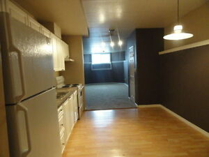 9221-94 Avenue - Updated 2 BEDROOM!!! ONE MONTH FREE RENT!!!!!