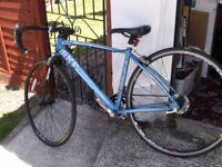 Bike Curve 700 Racing Bike