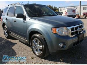 2010 Ford Escape XLT