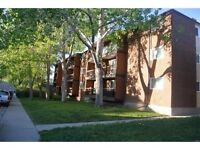 One of MULTIPLE Calgary condos at an AMAZING PRICE