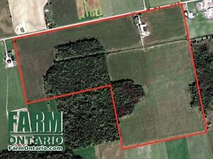 152 Acres with House & Finishing Barn in Mt Elgin!