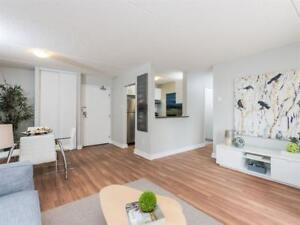 Bachelor- Downtown-Hydro Included- Newly Renovated!