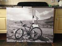B/W Canvas mountain bike picture
