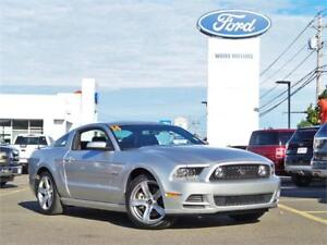 2014 Ford Mustang GT ( Low km's!)