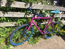 Single speed limited edition light frame
