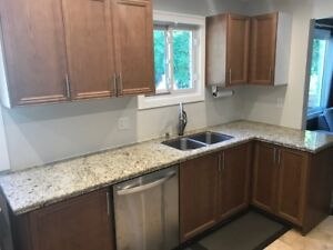 Beautiful Kitchen Cabinets and Marble Countertop for Sale