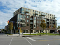 Guelph Downtown Commercial Leasing