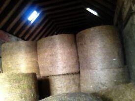 Hay/haylage 4x4 bales