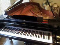 Piano Lessons, Violin/Vocal Instruction