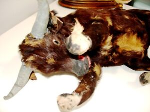 BULL Glass Eyes REAL Fur Leather Gauze Mache WEIRD fun & WHIP Cambridge Kitchener Area image 10