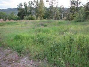 .97 ACRE COMMERCIAL LOT in DOWNTOWN BARRIERE..!