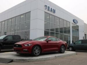 2017 Ford Mustang ECOBOOST, 100A, SYNC, AIR CONDITIONING, REAR C
