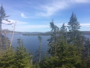 Beautiful pond front lot located in Blaketown St. John's Newfoundland image 4