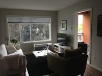 2 Bed, 2 Bath Furnished Condo Sept 01