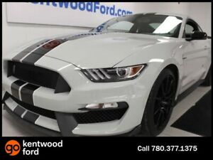 2017 Ford Mustang SHELBY 6-SPD manual RWD, NAV, heated/cooled se