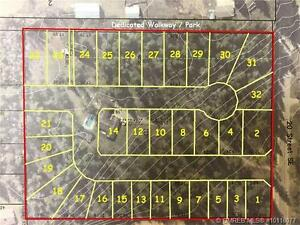 NEW RESIDENTIAL LOTS SALMON ARM