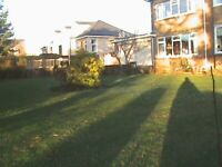 Grass cutting , Hedge triming, Tree work, Laying chips, Weed control,