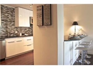 Upscale furnished 2 bedroom in Parkdale