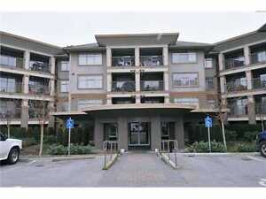 Maple Ridge 1 Bedroom, Top Floor Unit - Like New, Clean & Quiet