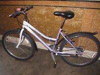 Female City Bike