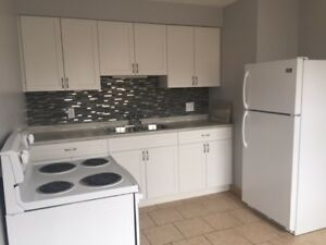 Completely Renovated 2 Bedroom townhouse