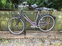 laidis bike