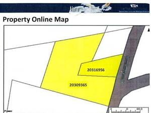 2 parcels of land for one great price.