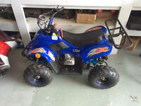 2014 Koyot 110cc quad never used