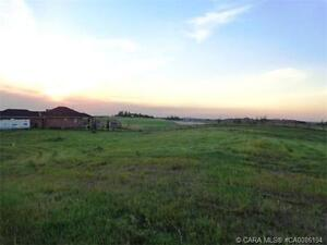 Prime Lot - Wolf Creek Village on Golf Course Only $99,900