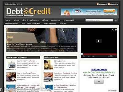 Hot Debt Load Credit Cards Resource Niche Wordpress Blog Website For Sale