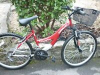 LADIES CRUISER STYLE BICYCLE UPLAND LILI ROSE ! 18 SPEED / 26 INCH WHEELS ! V.G.CONDITION