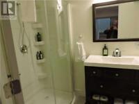 1 bedroom renovated basement near bramalea and steeeles