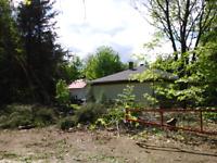 Arboriculture Leforestier