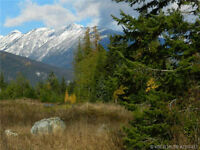 Several Building lots for sale in the West Kootenays