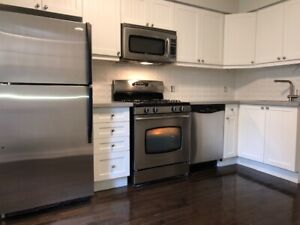 Newly Renovated 2  Bedroom facing Trinity Bellwoods Park