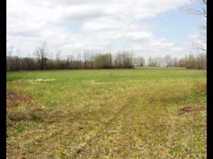 $100 acre. 42.5 Acres for RENT.