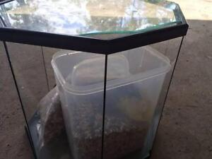 Fish tank With gravel and filter Mount Colah Hornsby Area Preview
