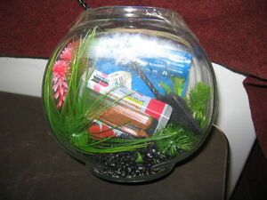 Small Glass fish bowl with contents