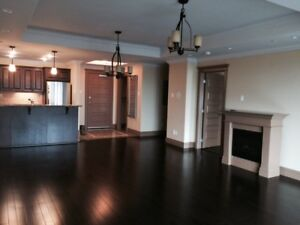 DOWNTOWN - 2 bedroom Trillium DOWNTOWN available NOW