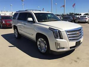 2015 Cadillac Escalade Platinum AWD (Just 38,000 kms)