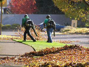 Travis's Snow Removal Fall Leaves Lawn Care Open Year Round Too Oakville / Halton Region Toronto (GTA) image 1