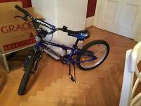 Boy's bike BRAND NEW age 5 to 8 blue
