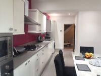 Nice 3 bedroom luxury house in Dagenham area RM8