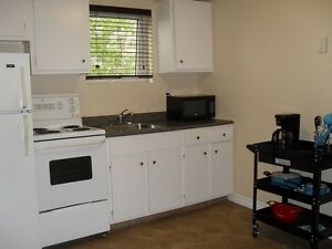 VIDEO WALKTHROUGH - 1 Bedroom, Fully Furnished - Downtown