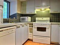McGill Ghetto 3bdr available immediately