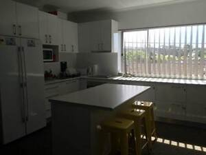FURNISHED ROOMS AVAILABLE Mayfield Launceston Area Preview