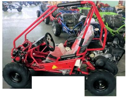 Zuma Bilby twin seat go cart,Just for the kids!! Campbelltown Campbelltown Area Preview