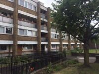Nice 3/4 bedroom duplex flat with garden next to Queens Mary University E3